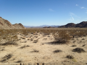 See those mountains? I'm headed from them in the Pinto Basin.